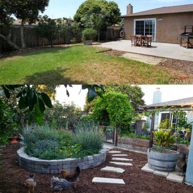 Top: July 2013, the last real estate listing. A plain grassy back yard. Bottom: Winter 2018. A completely transformed space, with raised garden beds surrounding the patio, a stone raised bed full of flowers on the outside of it where there used to be grass, a flagstone pathway winding around it, chickens roaming, and fruit trees.