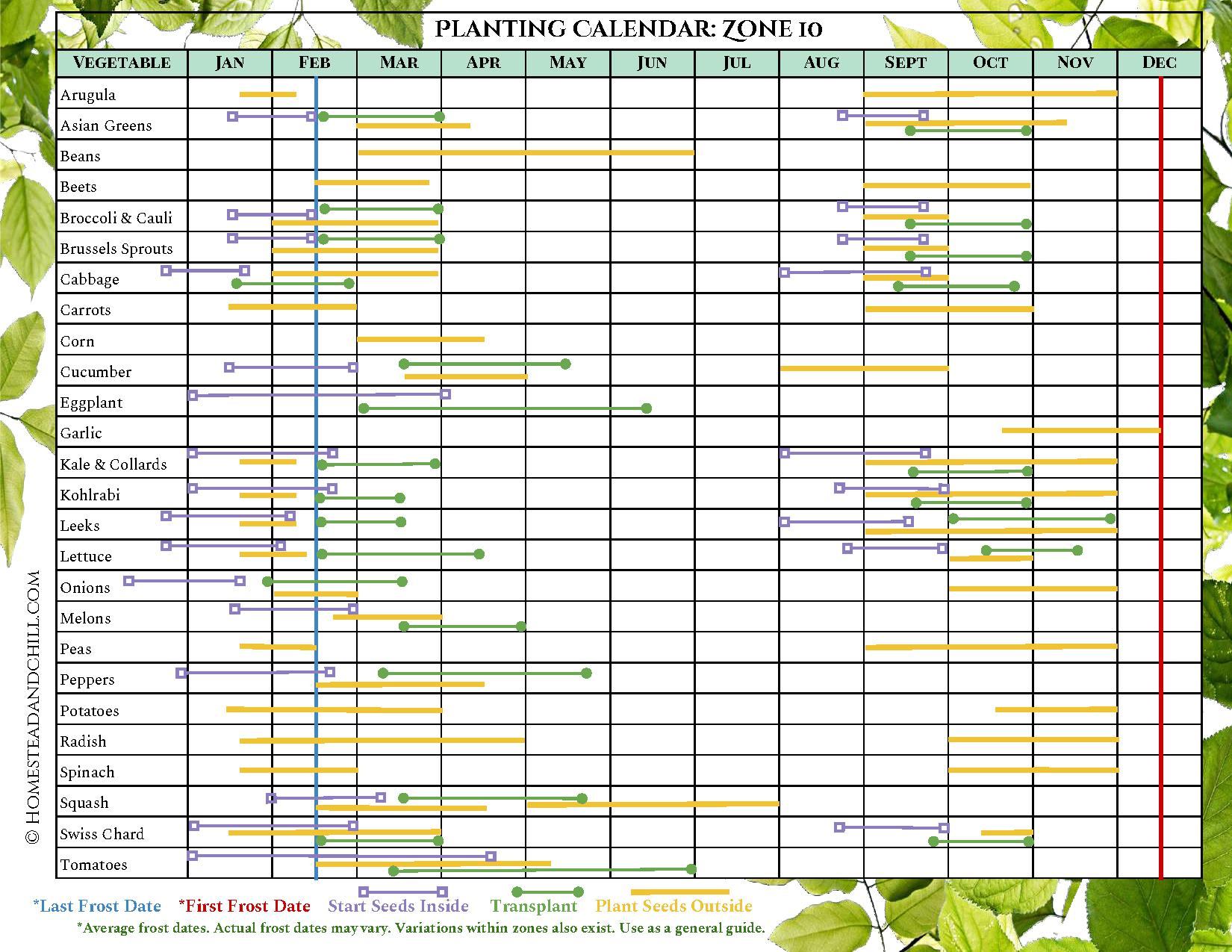 A planting calendar for Zone 10, it has many different vegetables lined up on the left side of the chart and all of the months of the year listed on the top of the chart. Each vegetable has different colored lines that correspond with when to start seeds inside, transplant outdoors, and plant seeds outside, along with corresponding last frost date and first frost date where applicable. The lines start left to right, showing what months you should do each particular task depending on the season and where you live.
