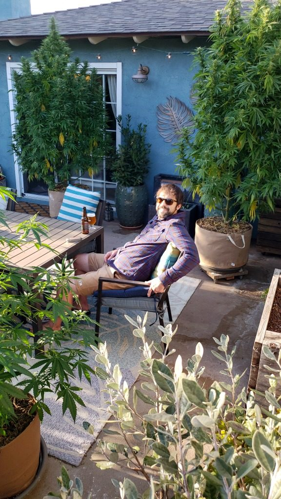 Aaron sits at the back patio table with a beer. Many plants are around the patio, including three large cannabis plants. They're all on wood dollies and moved aside while we're enjoying the patio.