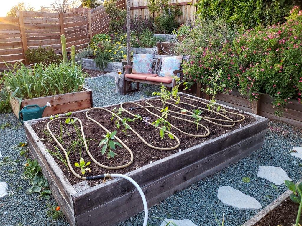 Garden Irrigation Solutions: DIY, Efficient, & Toxin-Free Watering
