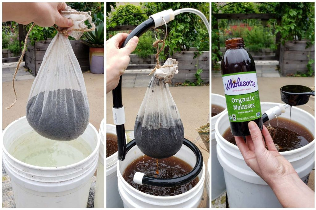 Three images in one. They are all of a hand poised in front of the same white 5-gallon bucket full of liquid, in the setting of a patio garden area. The first shows a paint strainer mesh sack full of several cups of compost, about to be steeped in the bucket of water. The next shows the liquid all brown, as the tea bad is being steeped. The final image shows a bottle of organic molasses, and 1/3 measuring cup pouring some in to the bucket.