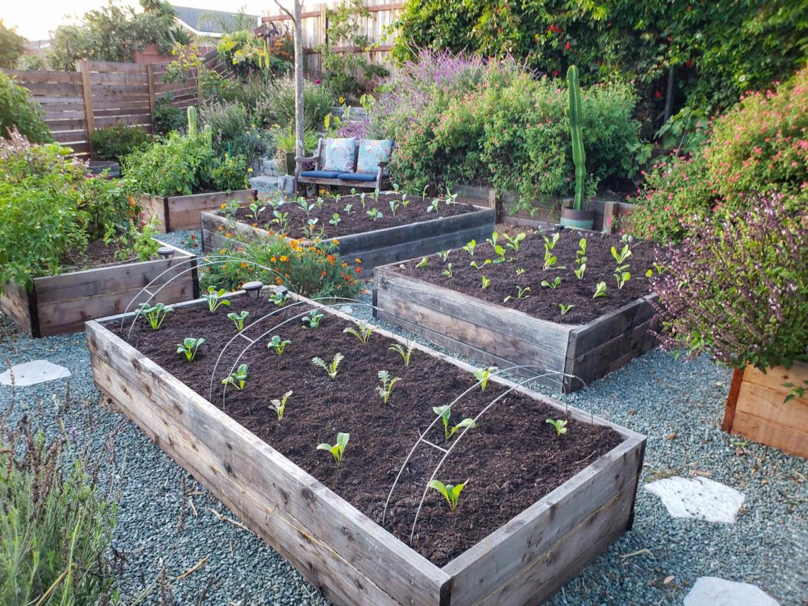 How To Prepare Amend Garden Bed Soil