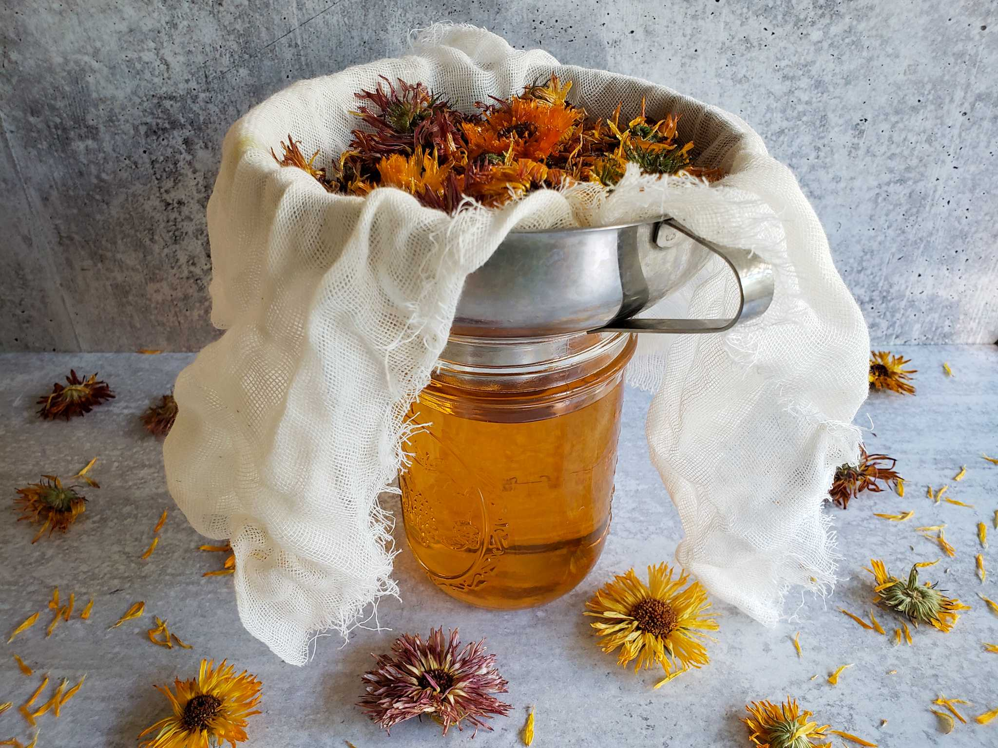 A pint mason jar is shown full of calendula infused oil. A stainless steel funnel sits atop the jar, there is cheesecloth lining the inside of the funnel and calendula flowers have been strained out from the oil that is now in the jar. Dried calendula flowers litter the area around the jar.