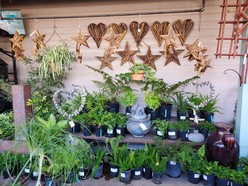 A display is shown at a local nursery, there are various shade loving plants in one gallon containers displayed throughout three tiers. There are ceramic pots, fountains, and wooden driftwood art in the shape of stars and hearts mixed in throughout. Any of which would make an excellent gift for the plant or nature lover in your life.