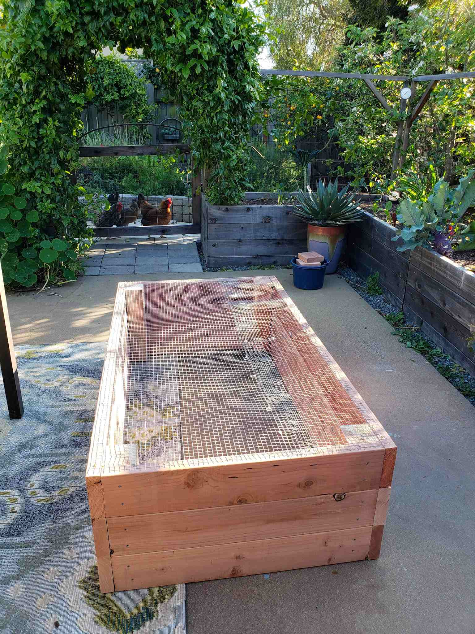 Picture of: Raised Garden Beds Vs In Ground Beds Pros Cons Homestead And Chill