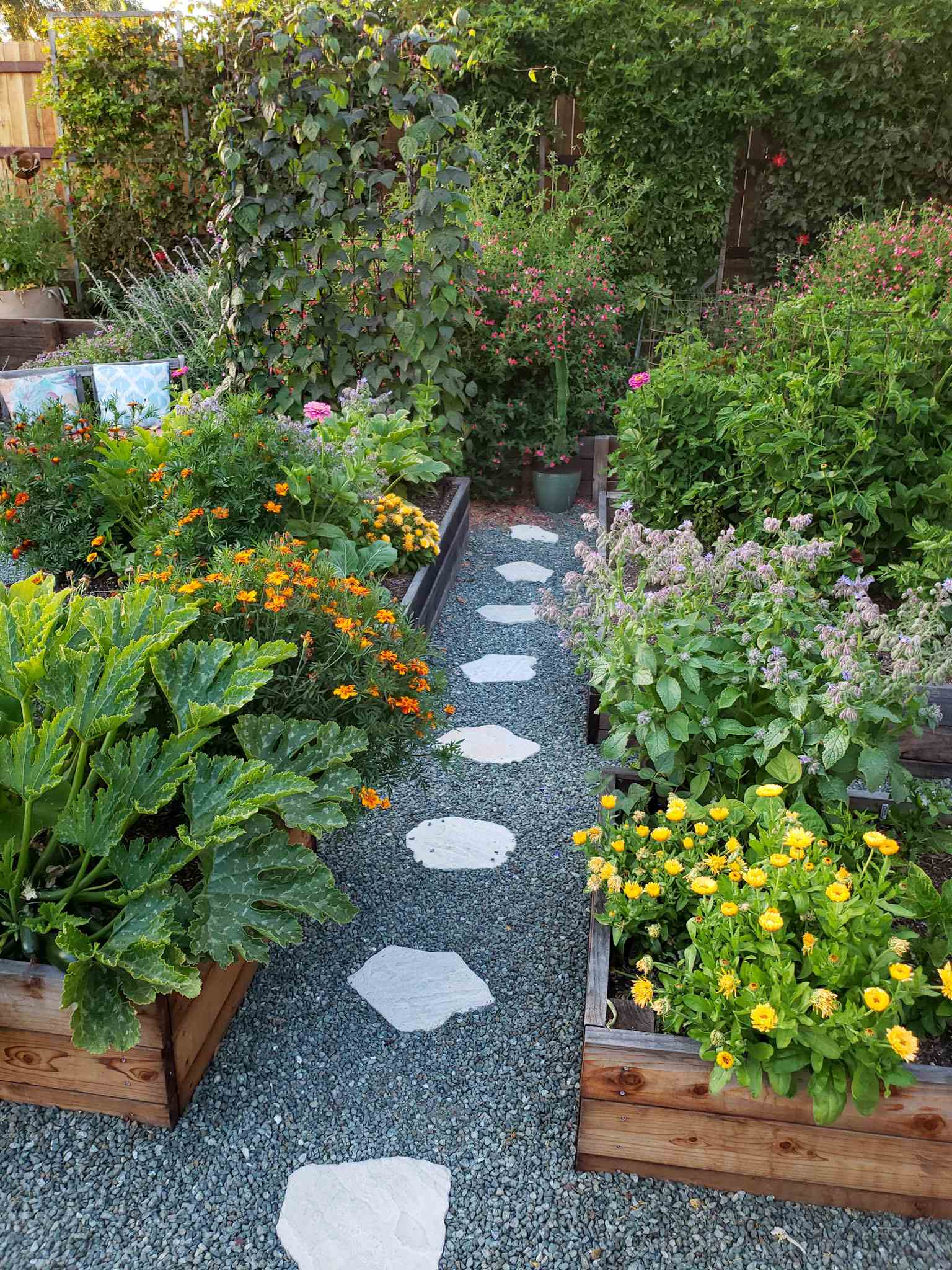 Image of: Companion Planting 101 W Garden Companion Planting Chart Homestead And Chill