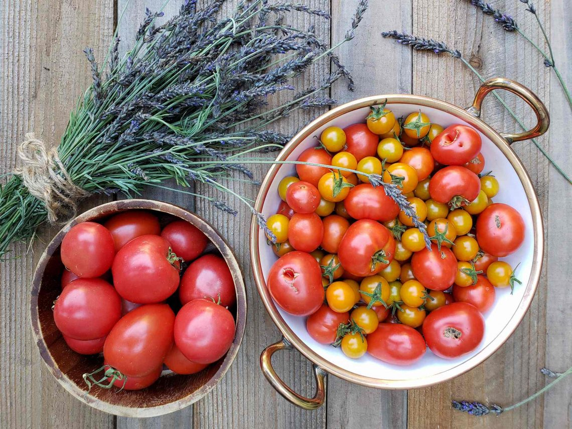 Growing Organic Tomatoes How To Plant Feed Prune Grow Tomato