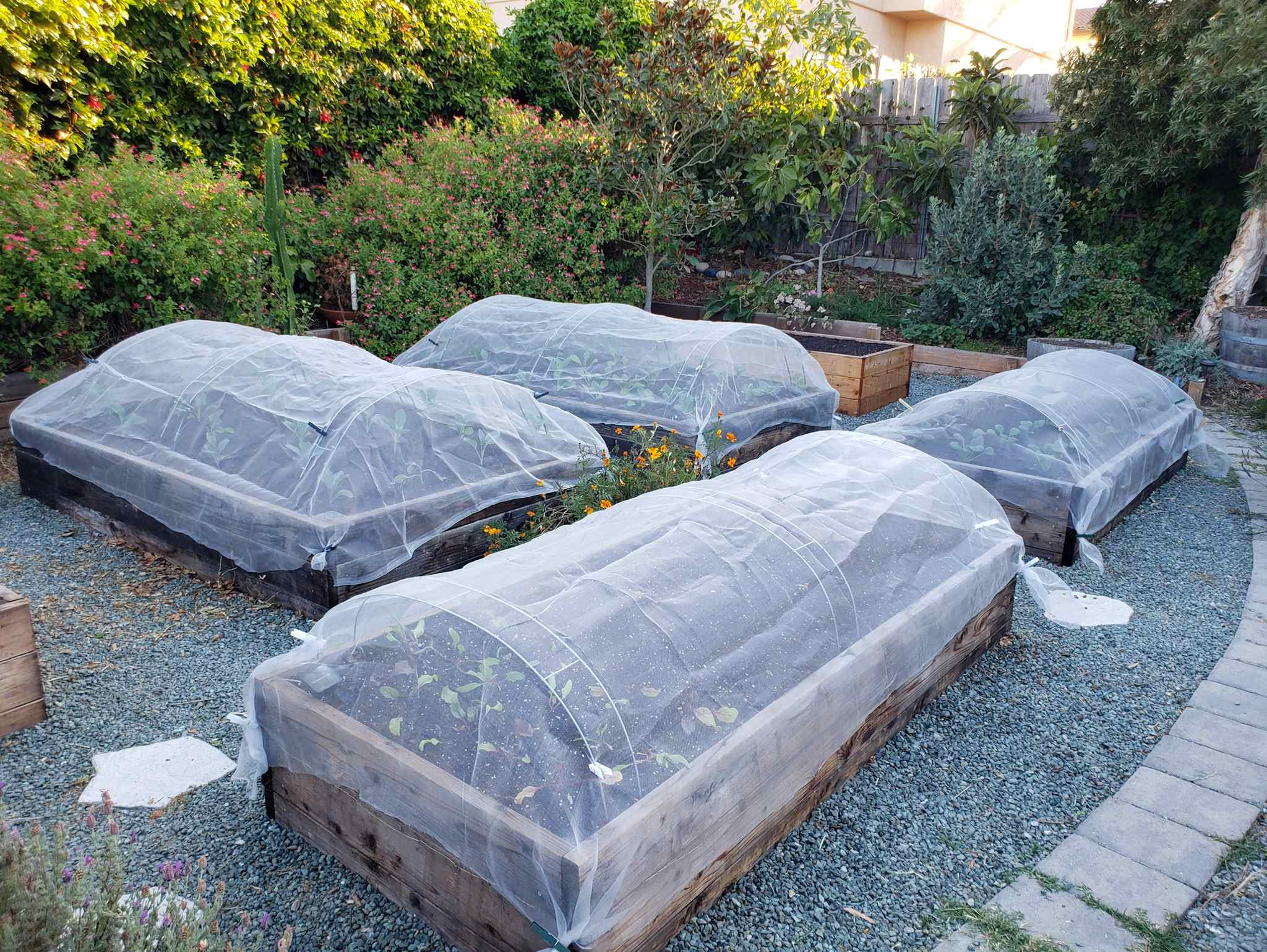 Using Hoops and Row Covers for Garden Pest Control, Shade & Frost  Protection ~ Homestead and Chill
