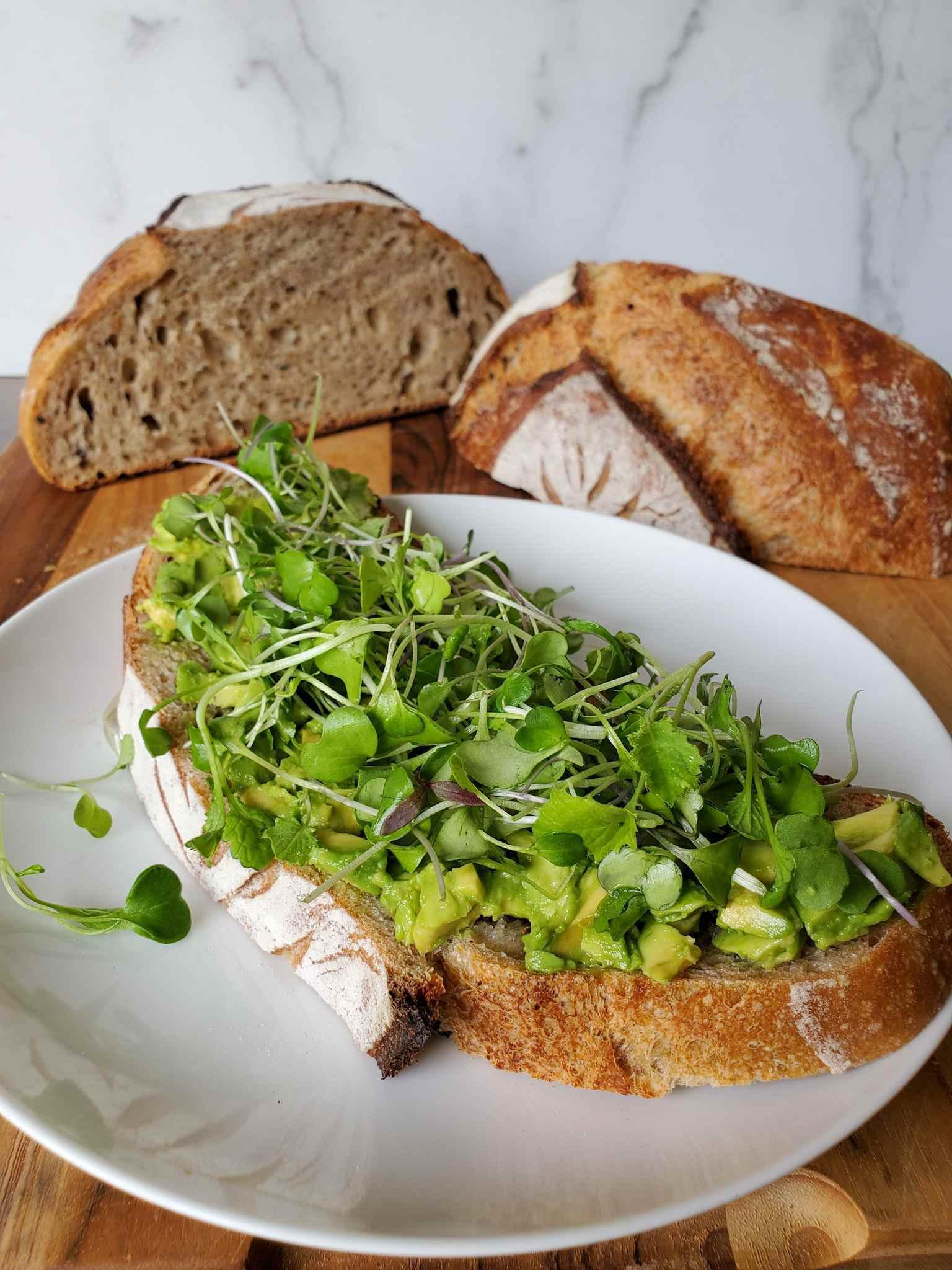 Une tranche de pain au levain est représentée sur une plaque en céramique blanche. Le pain a une couche d'avocat sur le fond avec un lit de micro-verts empilés sur le dessus. Il reste le pain restant. Coupé en deux et assis à l'arrière-plan derrière la collation en vedette.
